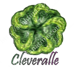 logo-cleveralle copy.jpg