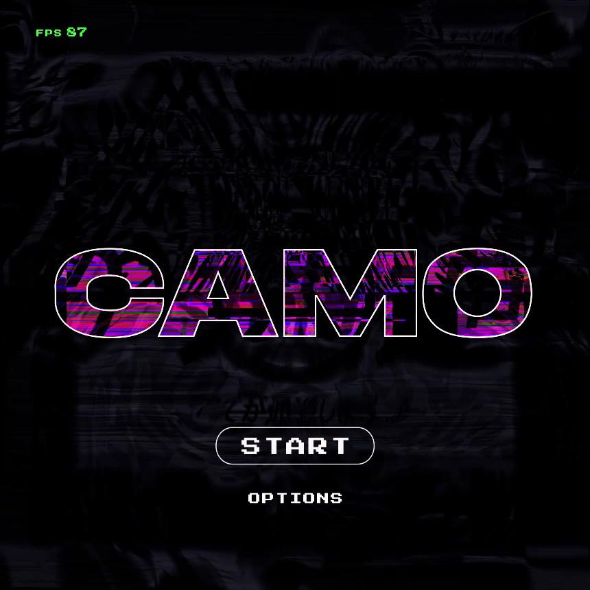 Camo_intro