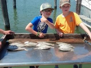 Next Generation of Fisherman