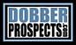 Dobber Prospects Logo.png