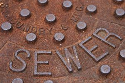 Sewer & Drain
