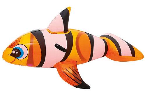 "63"" CLOWN FISH RIDE-ON"