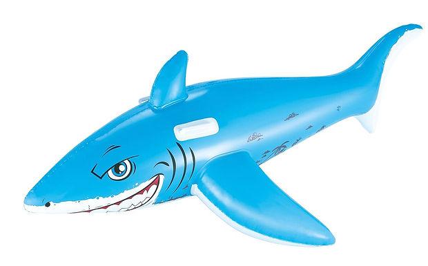"""73x44""""Great White Shark Rider"""""""