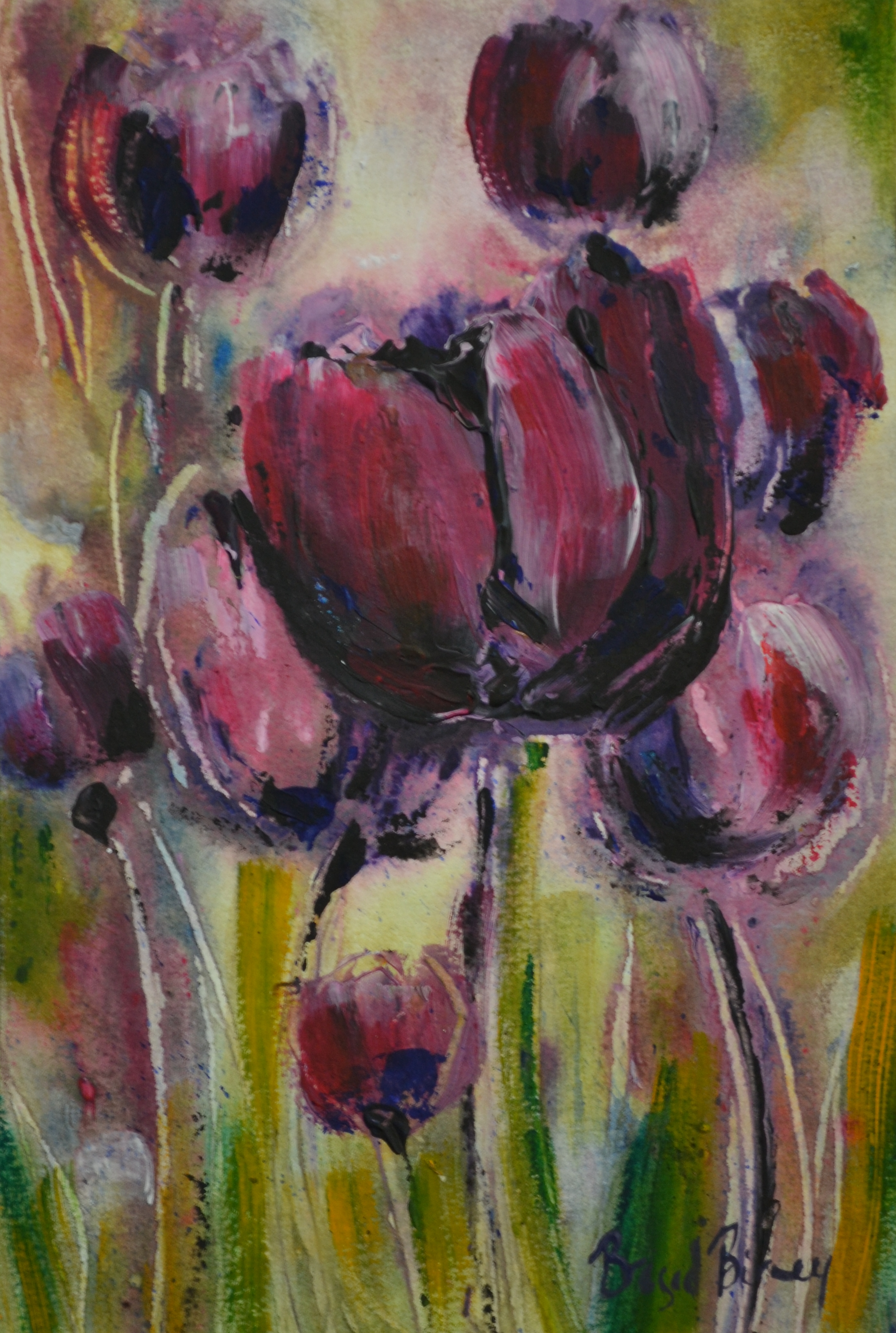 Tulips - Summer Evening