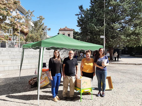 We proudly showed our Beehive in North Macedonia