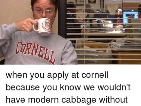 The Essay Guide Series: Cornell University