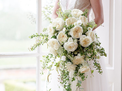Leonora: A New Wedding Favorite