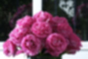 Yves Piaget Deluxe Garden Rose bouquet