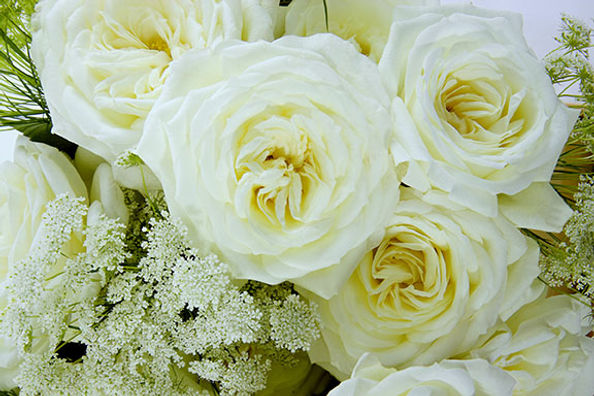 Alabaster Deluxe Garden Rose Bouquet