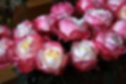 Princess Suki Japanese Garden Roses