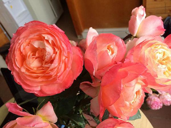 Princess Aiko Japanese Garden Rose Bouquet