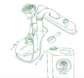Illustration of rose in vase
