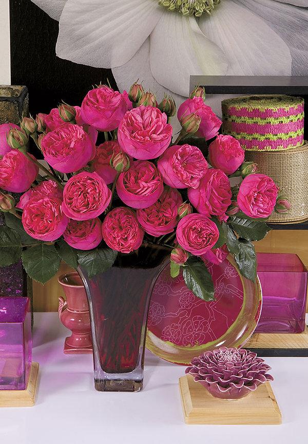 Pink Piano Deluxe Garden Rose arrangement