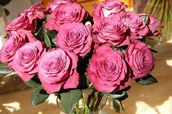 Precios Moments Deluxe Garden Roses arrangement