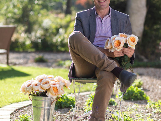 From Bud to Open Bloom by David Austin Wedding Roses