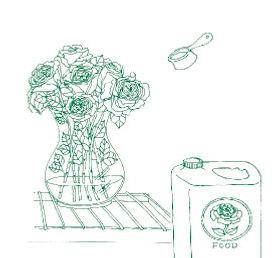 Illustration of rose bouquet