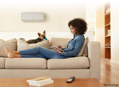 Why our ductless heat pumps are a great choice for pet owners
