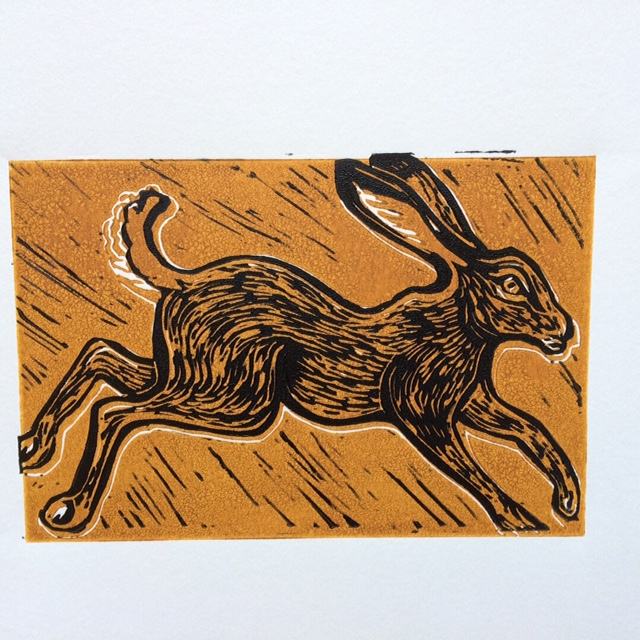 Hemingford Hare