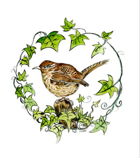 Autumn Wren