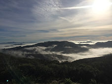 fog over eastern hills.jpeg
