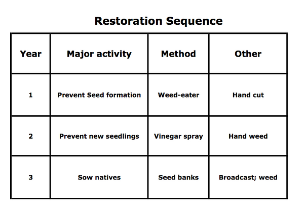 restoration sequence.png