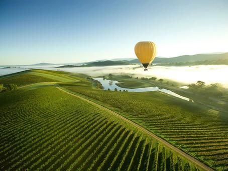 The Best Way To Get Around Sydney, Hunter Valley, Blue Mountains - Prestige Minibus Bookings!