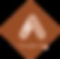 logo google ads.png