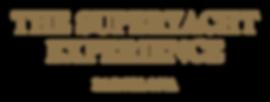 TSE-BCN_Logotype_AW_Gold_RGB_Small.png