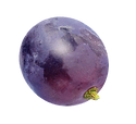 grape v1.png