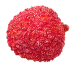 lychee%201_edited.png