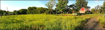 meadowPano.jpg