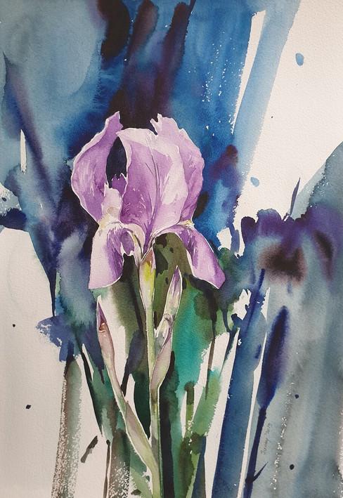 Çiçek 38