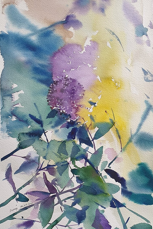 Çiçekler 7