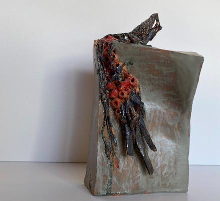 Ateş Çiçekleri - Görünüş 2