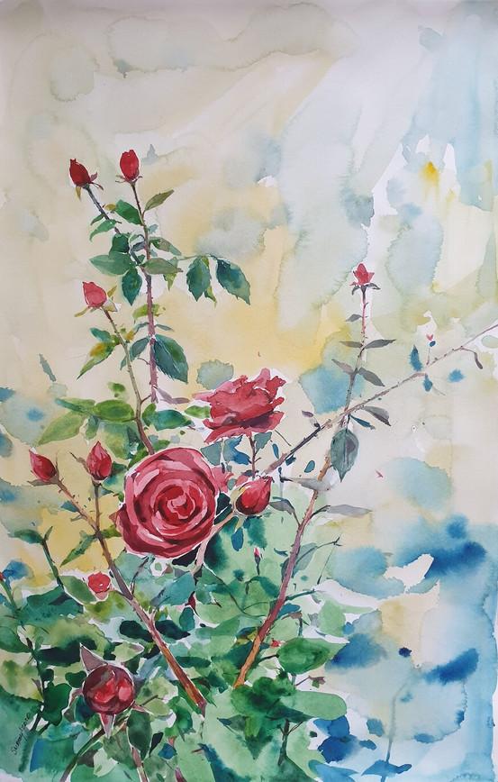 Çiçekler 6
