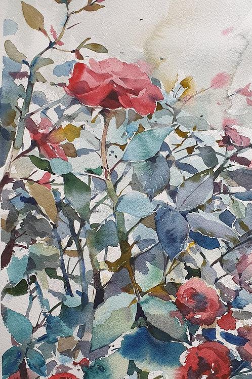 Çiçekler 4