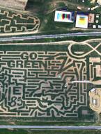 2008 - Go Green!.jpg