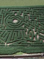 1996 - Locomotive Labyrinth.jpg