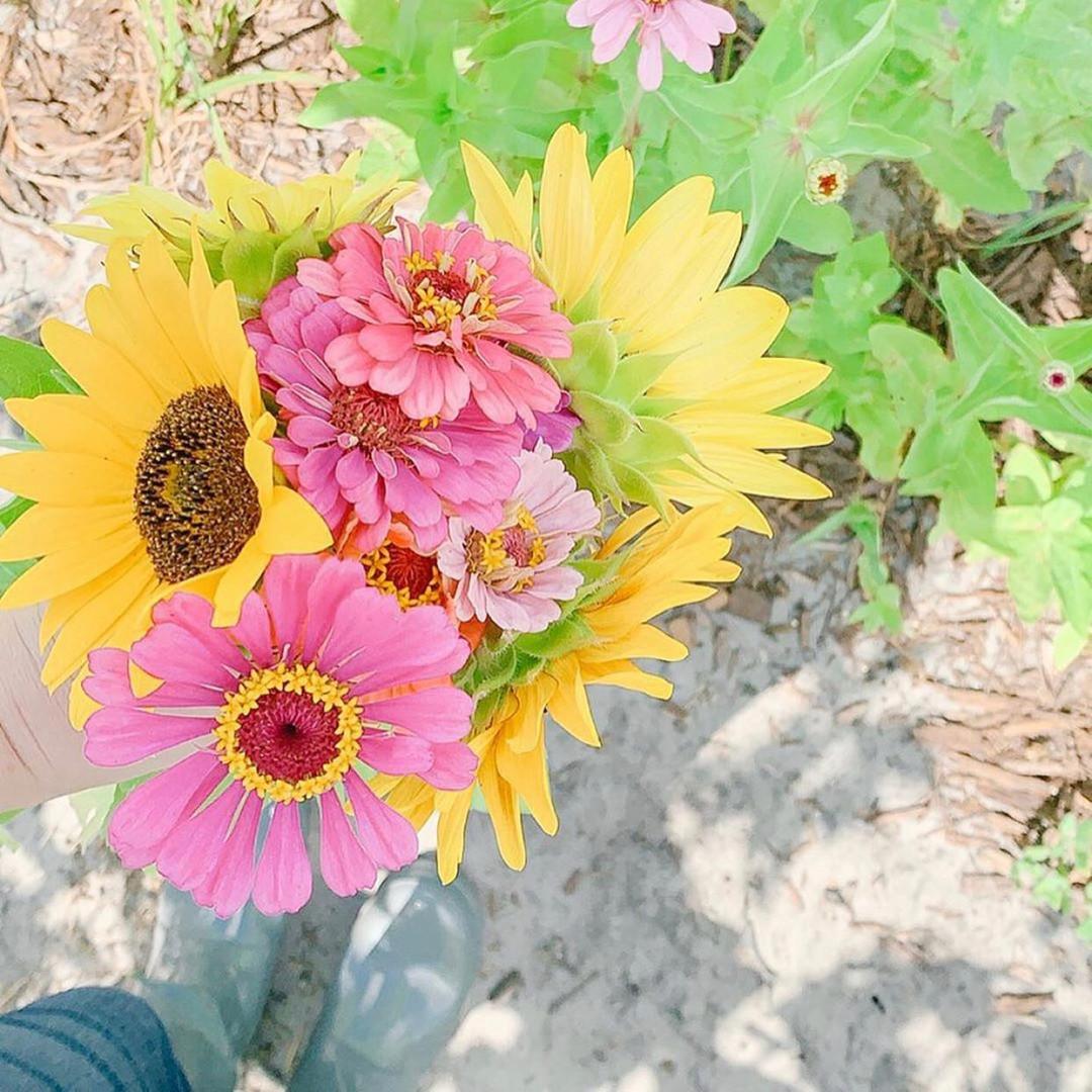 FLOWER PHOTO OP