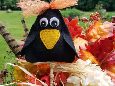 Baby Crow Free Pattern Find Your Muse