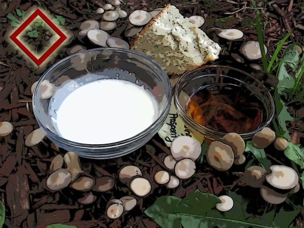 """A share of honey, grain, bread, and milk, left in offering upon cup-marked stones in the fields were known as """"elf-mills"""" or Boggart stones.""""  When you find a natural Fairy Ring such as the one pictured, use it to send good fortune back to the earth and bless hearth and home."""