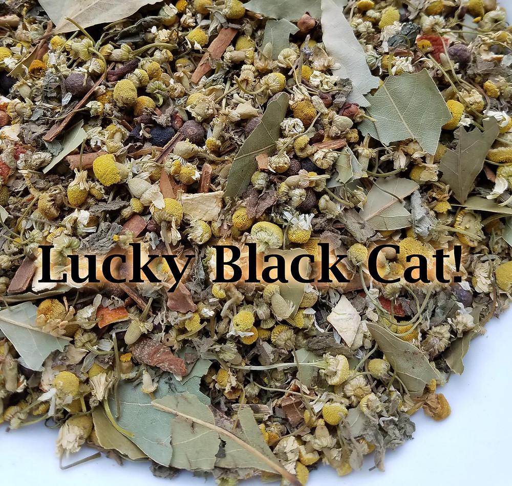 luckyblackcat