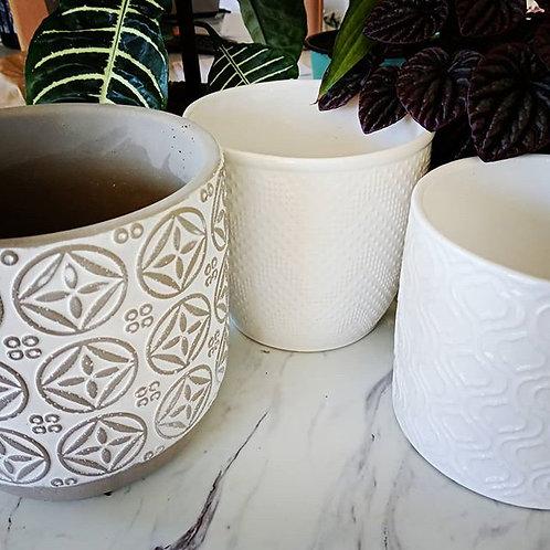 Ceramic & concrete pots