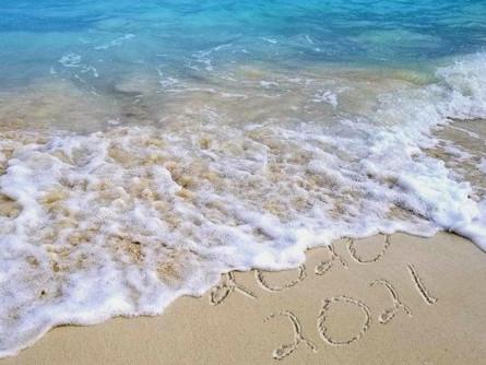 Ocean Laws: 2020 in Review