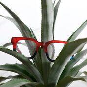 Ronit Furst Eyewear 8