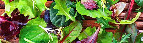 Mamma's Salads