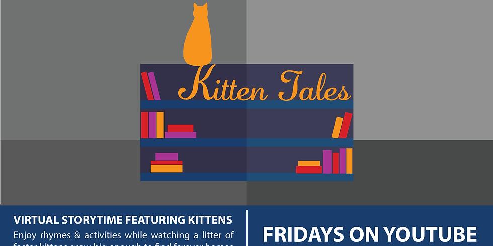 Kitten Tales Week 7