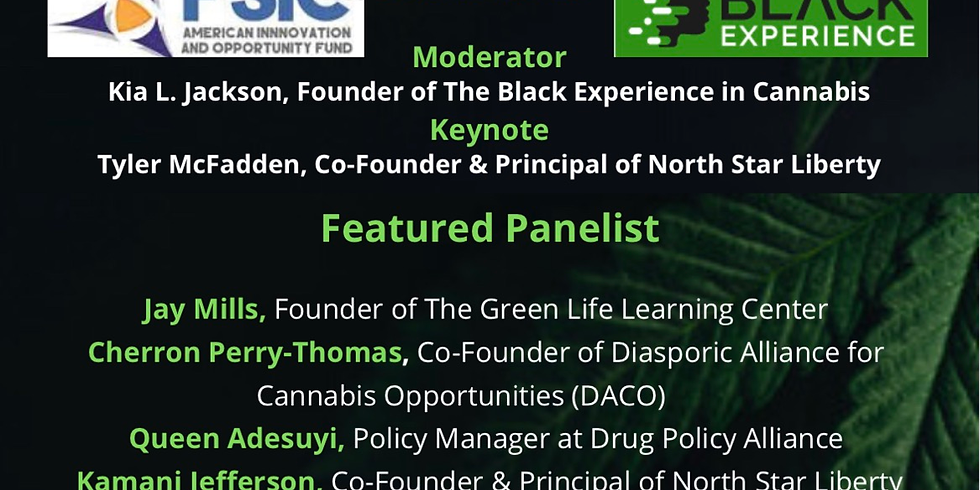 Inclusion in Cannabis Policy Panel