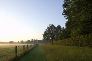 ландшафтный-дизайн-сад-Рональд-ван-дер-Хильст