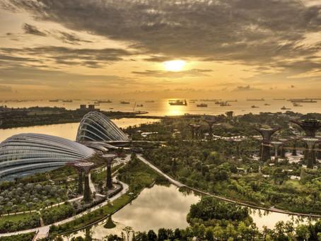 9 зеленых мест в Сингапуре, которые обязательны к посещению